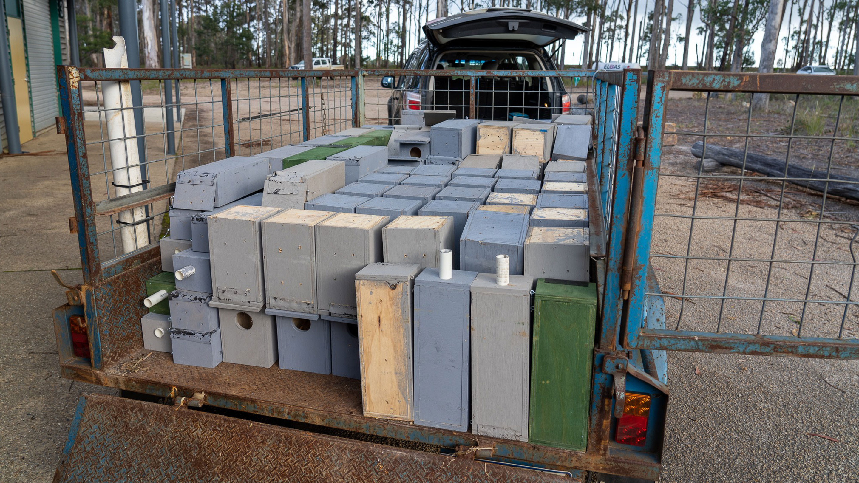 The nesting boxes travel to the Gippsland forests via Buchan.